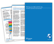 White Paper: Global Data Quality Research 2015