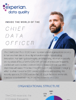 Inside the world of the Chief Data Officer