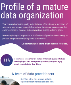 The profile of a data mature organization