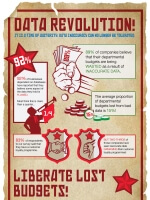The Data Revolution Infographic