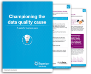 Championing the data quality cause