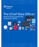 Chief Data Officer Report